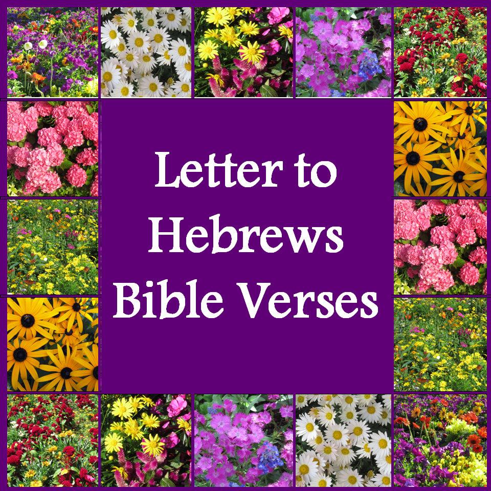 Hebrews Bible Verses