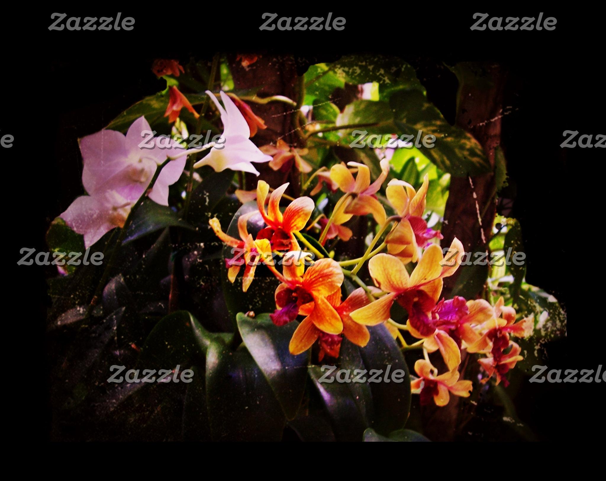 Tropical Purple and Orange Flowers