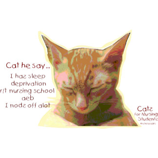 Cats for Nursing Students - Sleep Deprivation