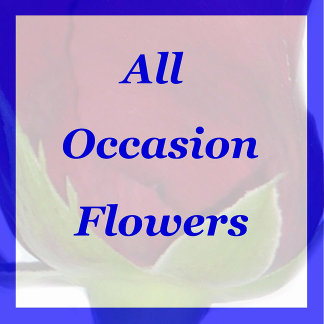 All Occasion Flowers