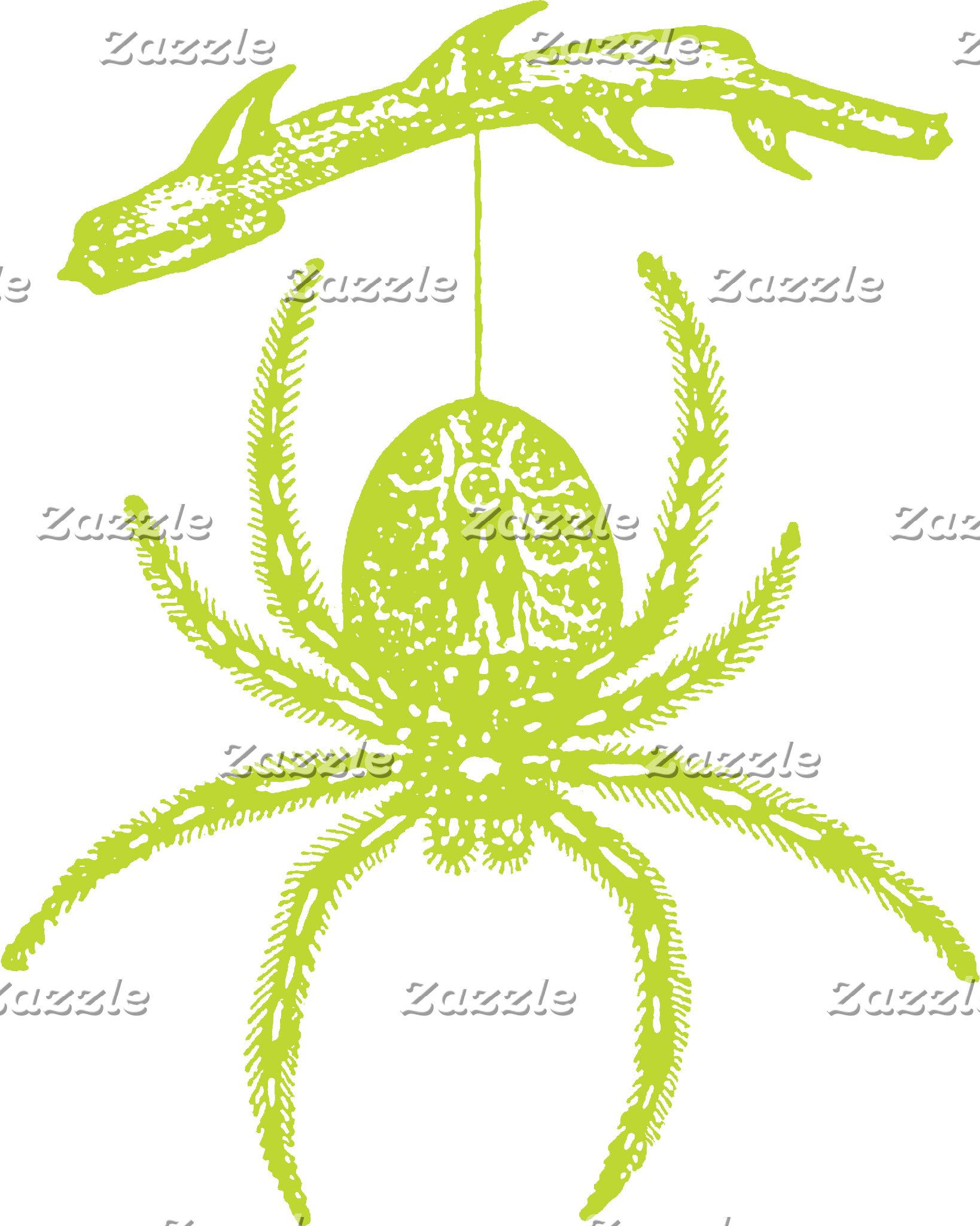 Poison Green Spider