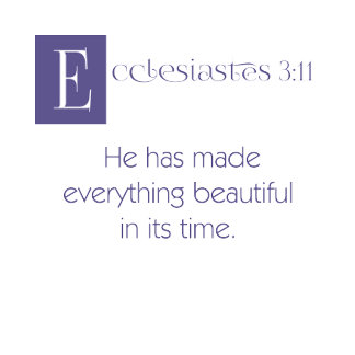 Eccl 3:11 - Everything Beautiful