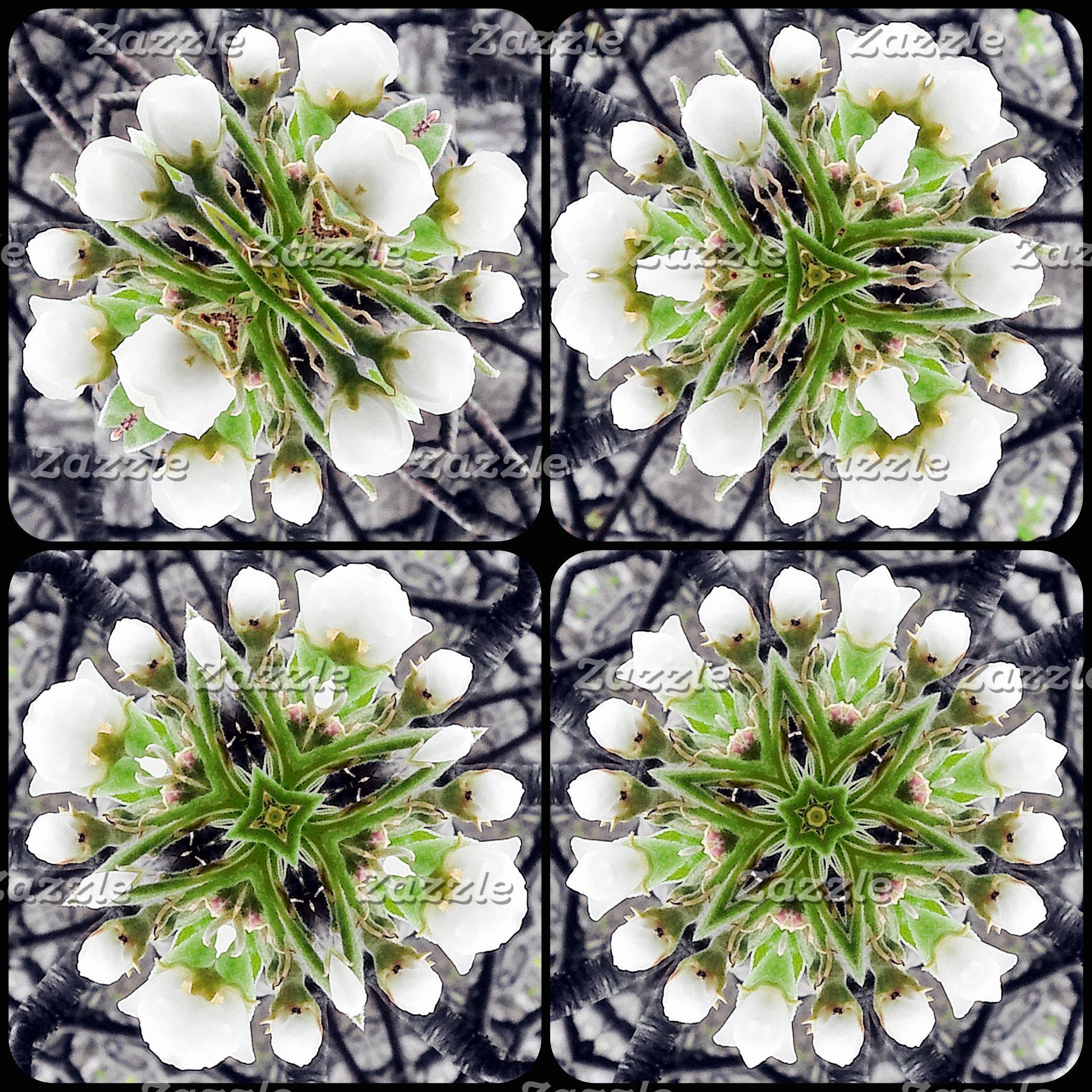 Kaleidoscope Mandalas