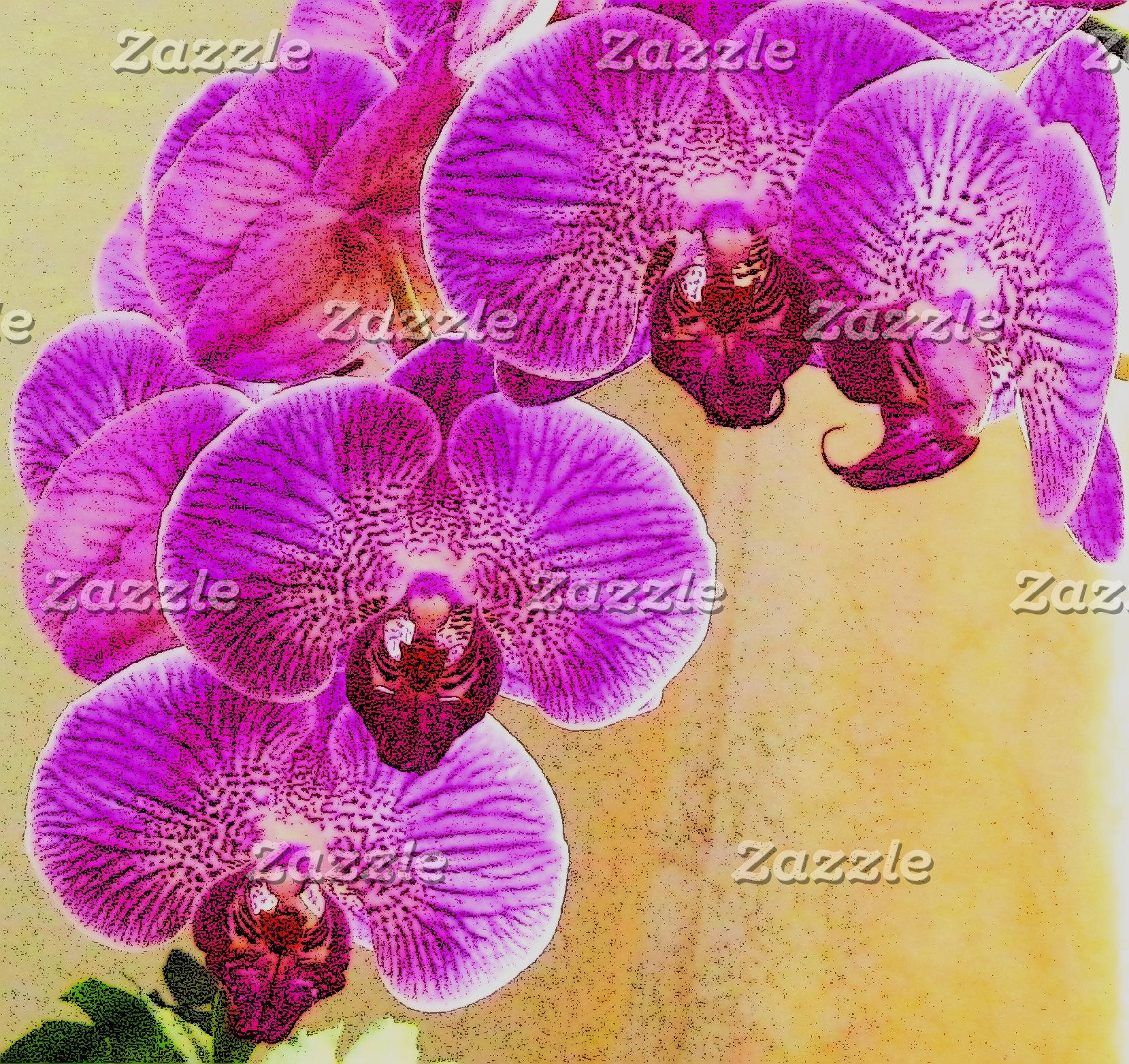 Orchid Promises