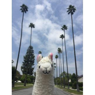 LA Llama