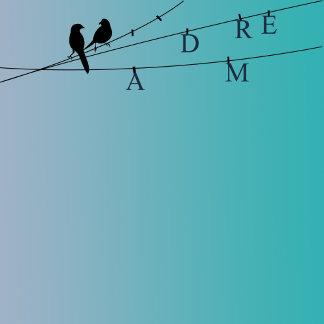 Birds Dream