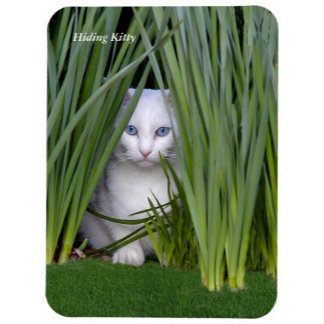 Cat Magnets, Luggage Tag