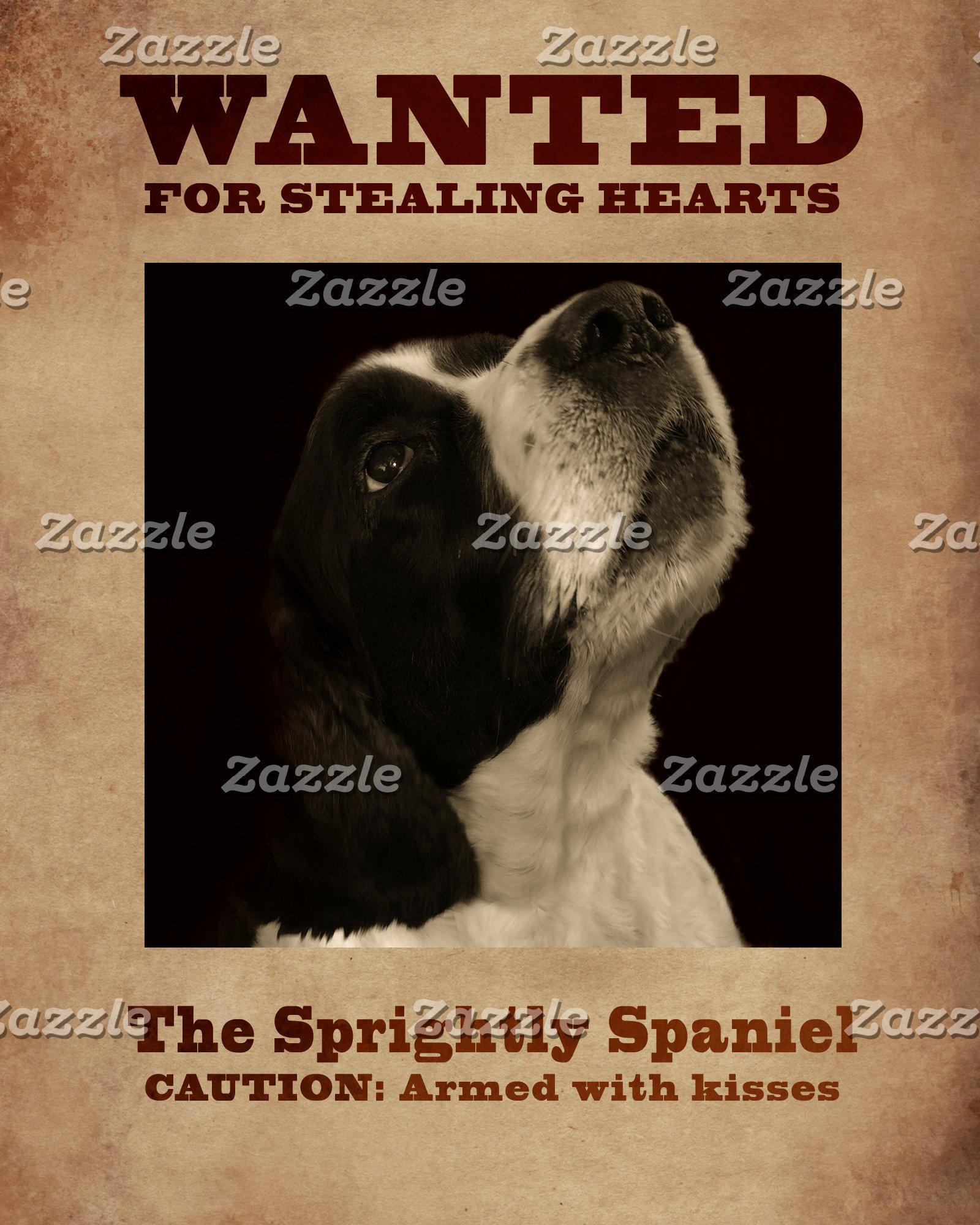 The Sprightly Spaniel