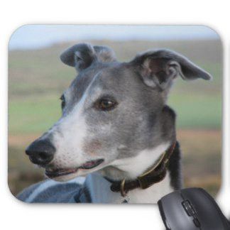 Greyhound mouse pads