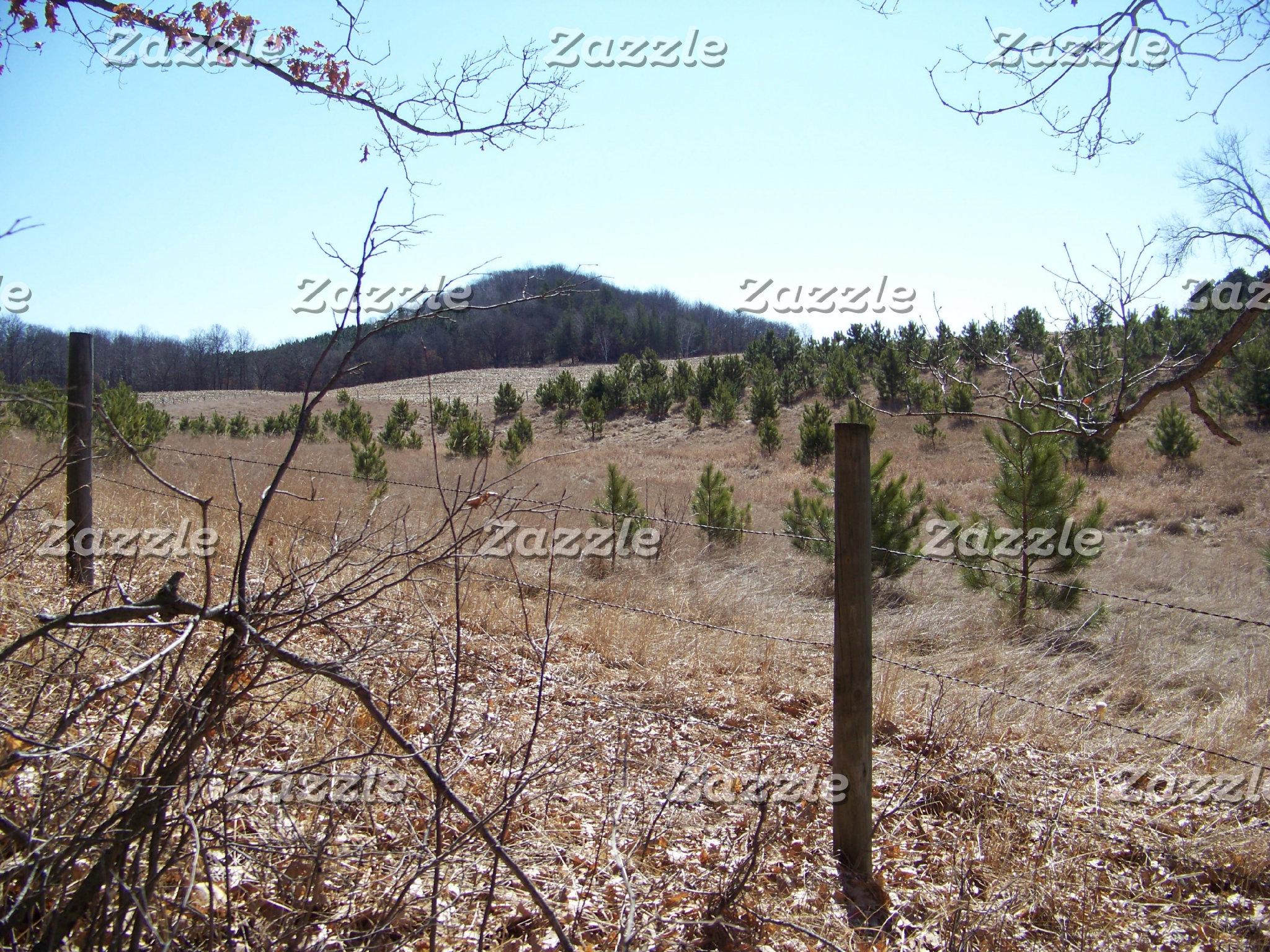 Woods & Fields