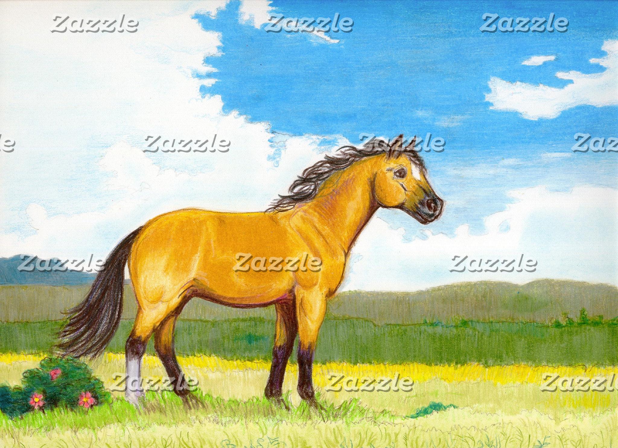 Little Horse on the Prairie