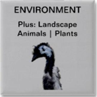 Environment   Nature