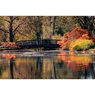 Bridge in the Fall