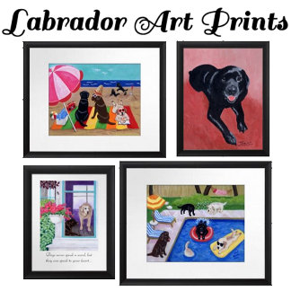 Labrador Art Prints