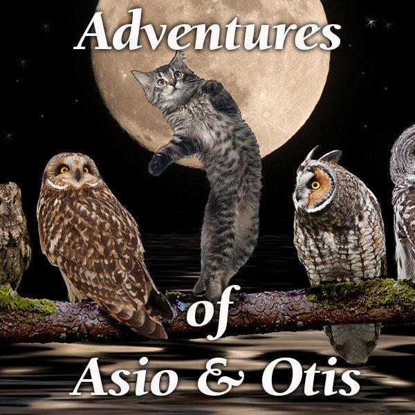 Adventures of Asio and Otis