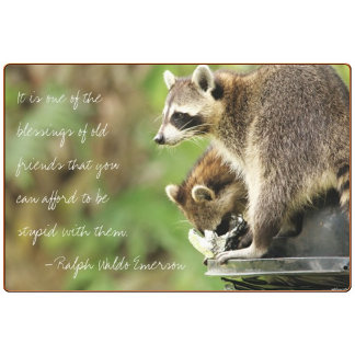 Friends & Blessings Friendship Quote