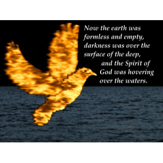 Holy Spirit Dove - The Creation