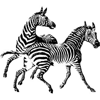 Animals - Vintage Illustrations