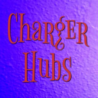 Chargers/Power Bank