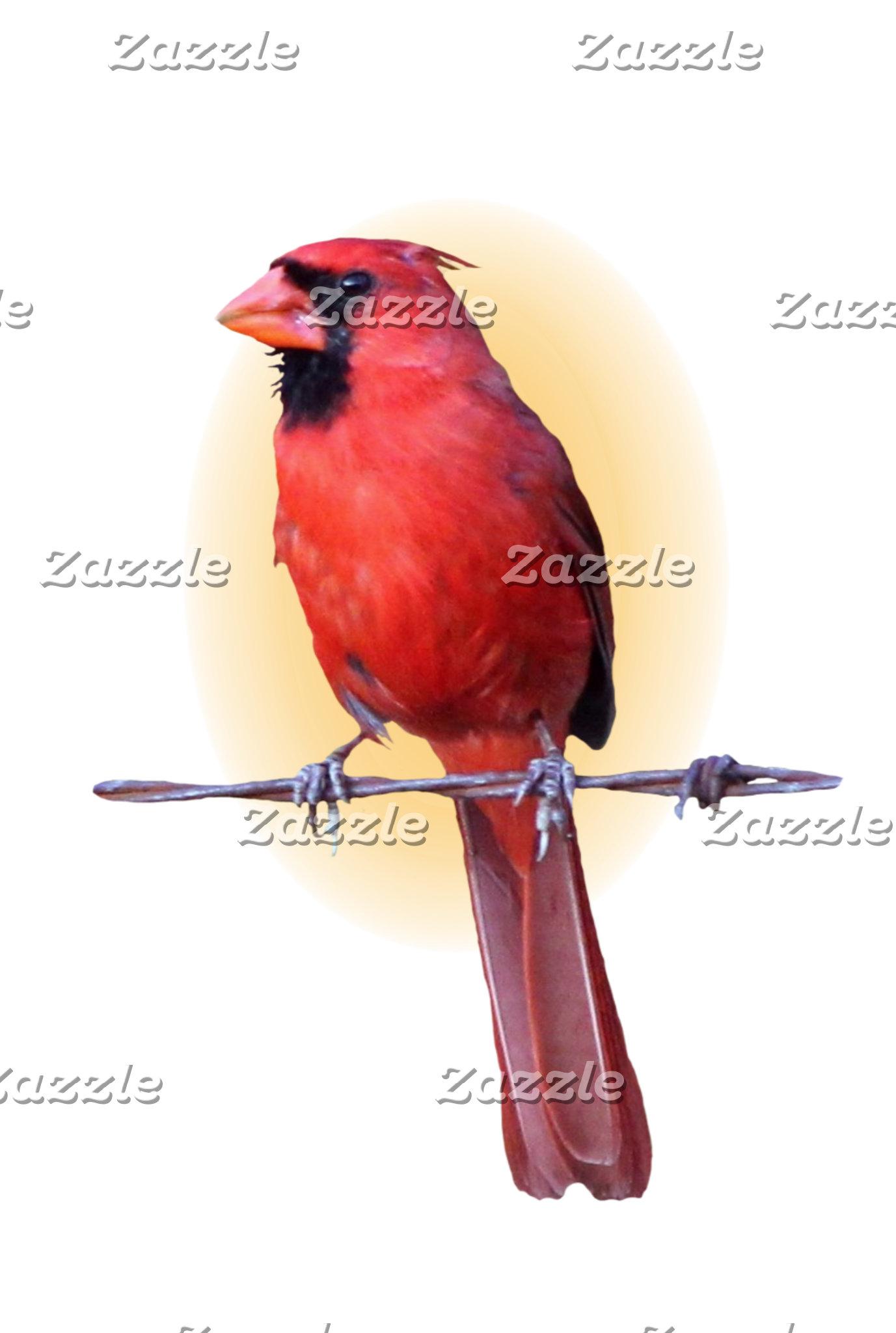 BIRDS AND DUCKS