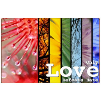 Rainbow LGBT Pride Symbol Love Defeats Hate