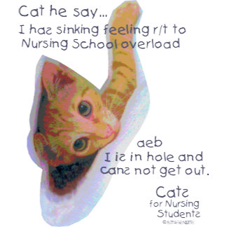 Cats for Nursing Students - I in Hole