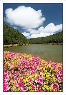 Empadadas Lakes  (Azores)