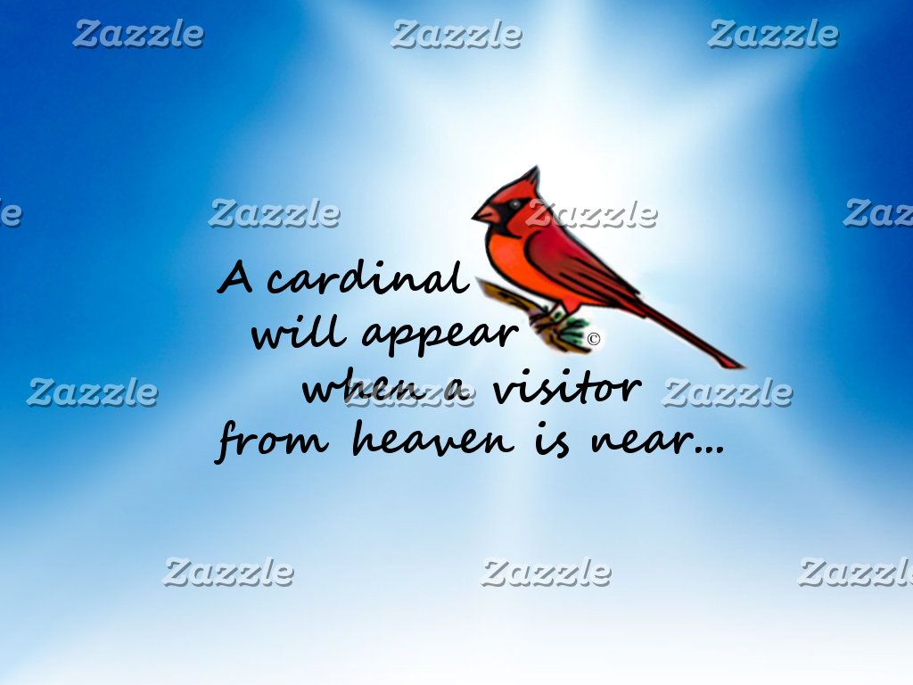 Cardinal, Visitor from Heaven