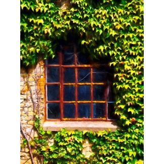Country windows