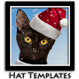 Santa Cats and Hats