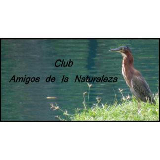 Tarjetas de Negocios / Presentacion