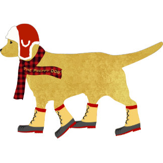 Winter Golden Preppy Dog