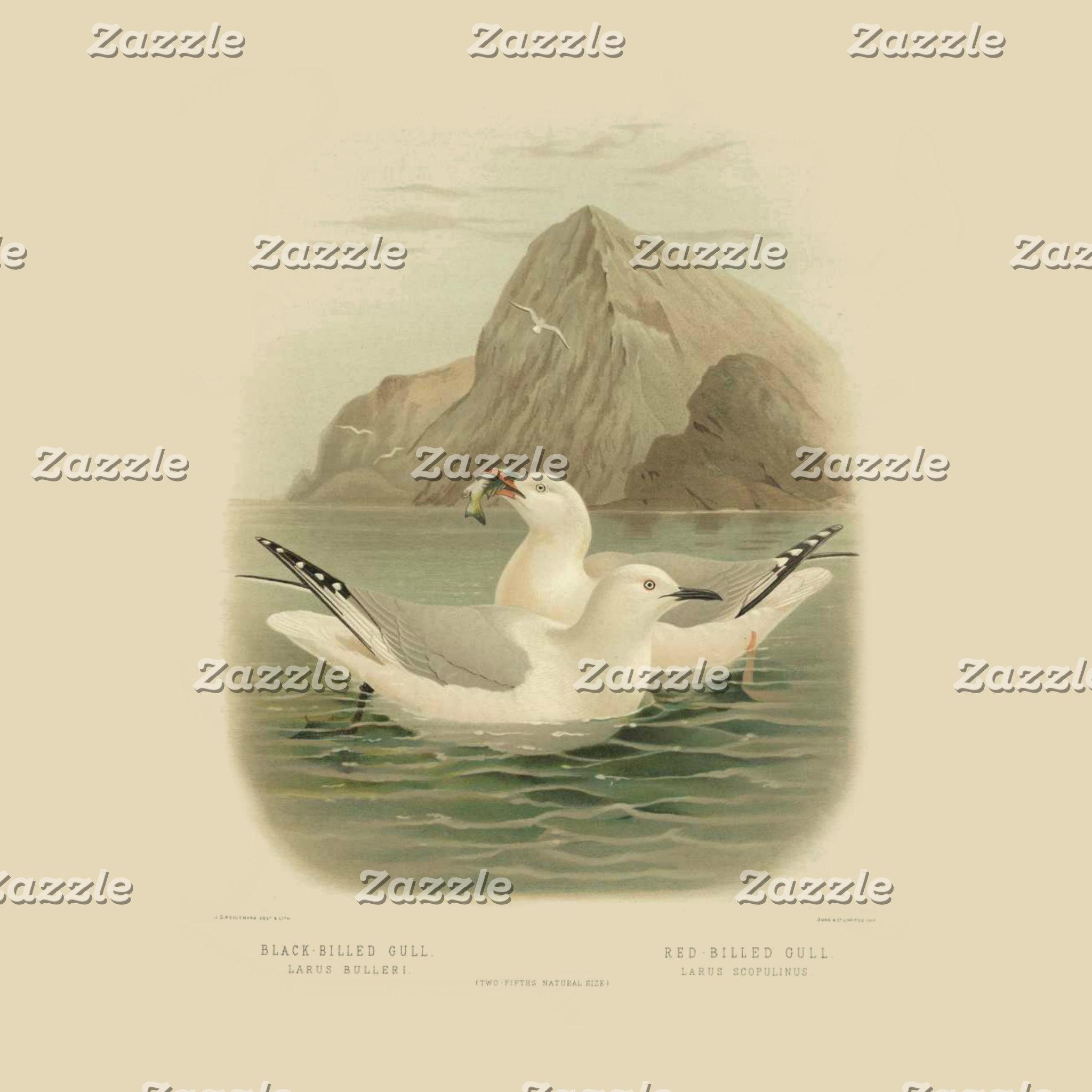 NZ Sea Birds