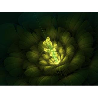 Photon Flower