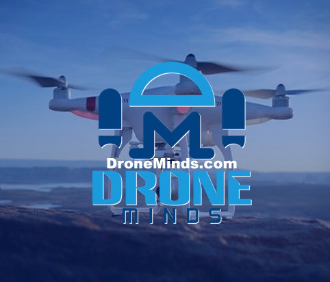 Drone Minds
