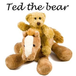 Ted the bear