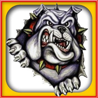 Bulldogs Grade School, College, High School Mascot