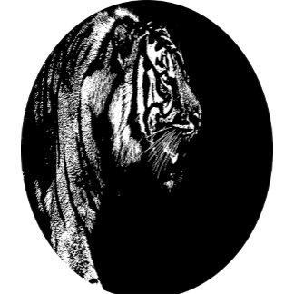 Chromatic Tigers