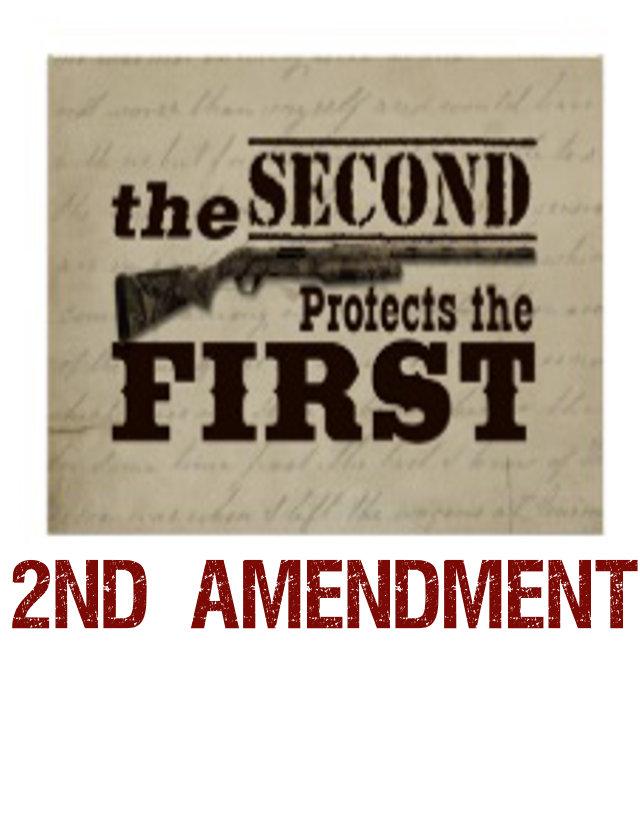 e) guns / 2nd amendment