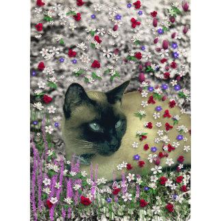 Stella in Flowers II