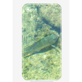 Barely There iPhone 5/5S Case