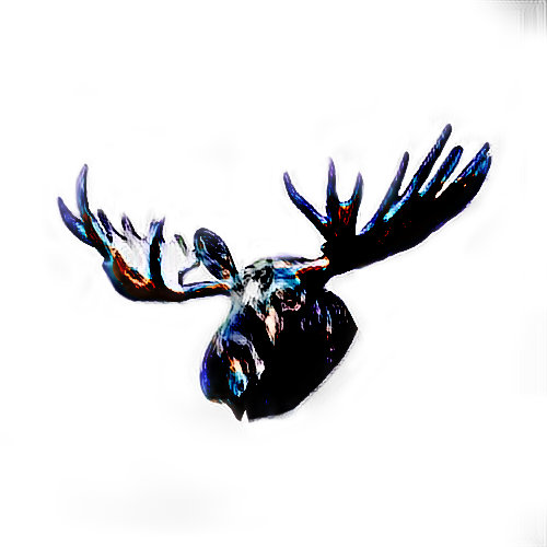 Moose Private Collection