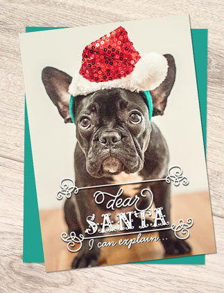 Pet Christmas Cards - Cute Bulldog Personalised Christmas Card - Zazzle