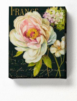 Botanical Canvas Prints