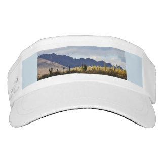 SW Landscape Custom Visor