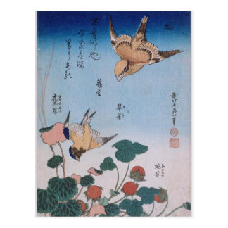 Swallow and begonia and strawberry pie Katsushika Postcard