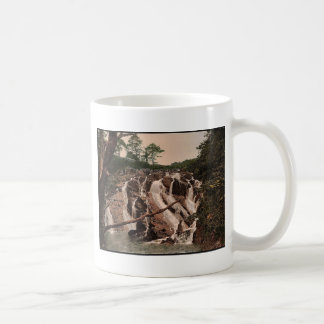 Swallow Falls, Fairy Glen, Bettws-y-Coed (i.e. Bet Coffee Mug