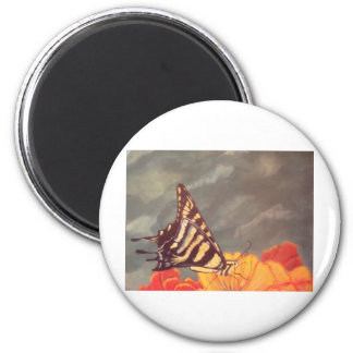 Swallow Tail Butterfly 6 Cm Round Magnet
