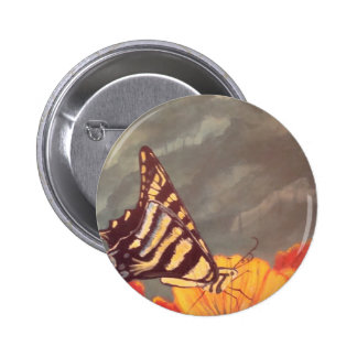 Swallow Tail Butterfly Pinback Buttons