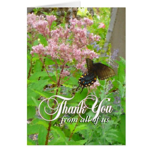 Swallow Tail Butterfly Blank Thank You Card